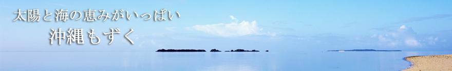 太陽と海の恵みがいっぱい!沖縄もずく